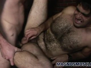 Super hirsute bear fucked in the butt